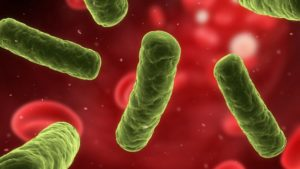 Pfizer UK Survey Highlights The Need To Understand Growing AMR Impact